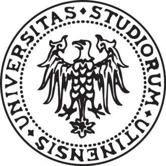 Lecture @ University of Udine, Conegliano